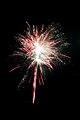 Fireworks DSC 0616 (6994405323).jpg