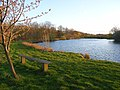 Fishing lake, Englefield - geograph.org.uk - 762532.jpg