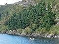 Fishing on Llyn Clywedog - geograph.org.uk - 554522.jpg