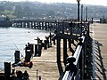 Fishing on the Pier - panoramio.jpg
