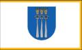 Flag of Druskininkai.png