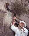 Flickr - Government Press Office (GPO) - Blowing the Shofar at the Western Wall (cropped-01).jpg