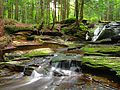 Flickr - Nicholas T - East Branch Falls (Upper Part) (2).jpg