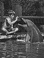 Flipper Tommy Norden 1965 No 2.jpg
