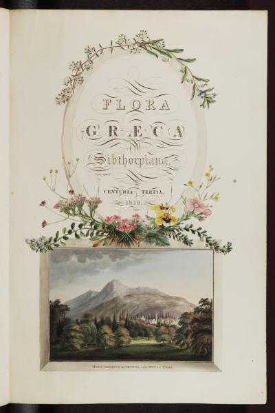 File:Flora Graeca, Volume 3.djvu