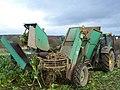 Fodder Beet harvesting - geograph.org.uk - 1241327.jpg
