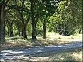 Folsom Bike path at Hancock 57 - panoramio.jpg