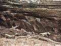 Fond de la grotte. (2).jpg
