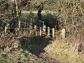 Footbridge over Top Dumble - geograph.org.uk - 1127283.jpg