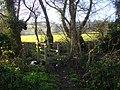 Footbridge over the Cradley Brook - geograph.org.uk - 1077772.jpg