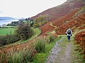 Footpath from Martindale Church to Howtown - geograph.org.uk - 1574848.jpg