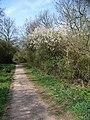 Footpath to Barwell - geograph.org.uk - 403466.jpg