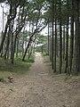 Formby Point - panoramio.jpg