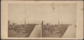 Fort Wood, Bedlow's (Bedloe's) Island, from Robert N. Dennis collection of stereoscopic views.png
