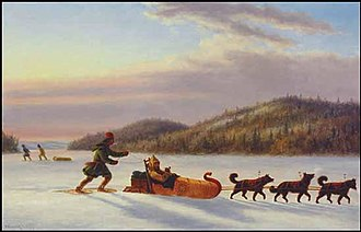 Dog sled - A depiction of a fur trader using a dog sled. Dog sleds have been used for over a thousand years.