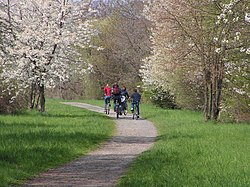 Göttingen rail trail, cyclists.jpg