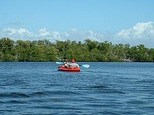 Estero Bay (Florida) - Kayaking on Estero Bay near Fort Myers Beach, Florida