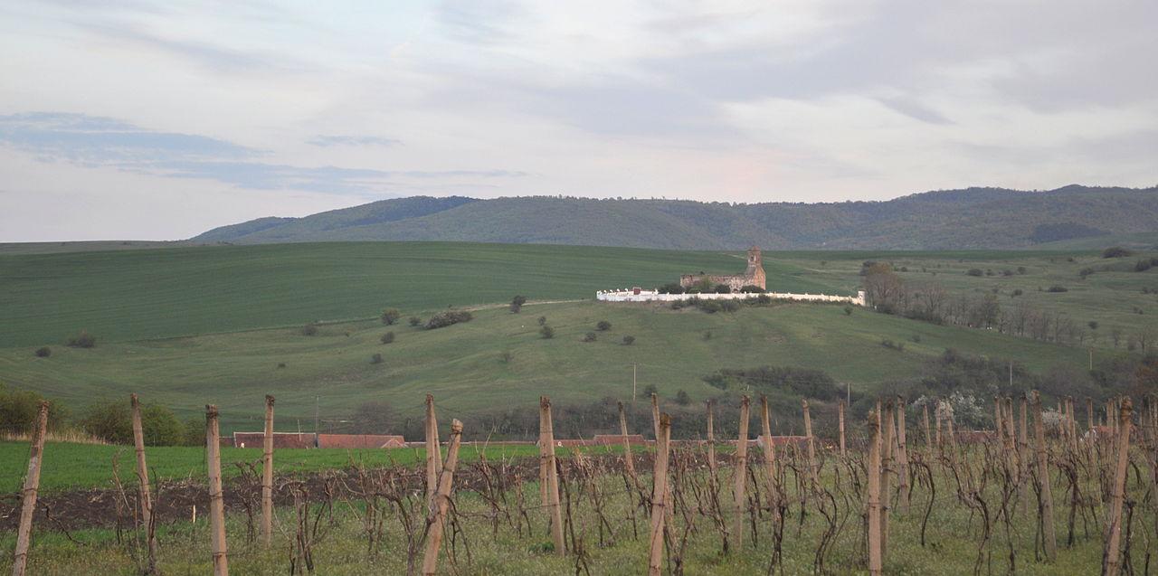 Bazilica romanică văzută din drumul Reciului