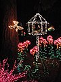 Garden d'Lights 2008 at the Bellevue Botanical Garden, img055.jpg