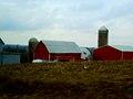 Garfoot Road Farm - panoramio.jpg
