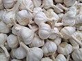 Garlic in Salem.jpg