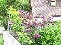 Garten bei Detwang - panoramio.jpg