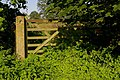 Gate to Field Near Old Gatehouse - geograph.org.uk - 237538.jpg