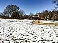 Georgia snow IMG 5757 (38932576042).jpg