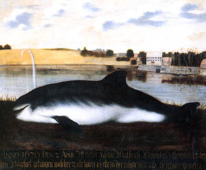 Bremen-Vegesack - Beached whale at Vegesack harbor in 1670 by local painter Franz Wulfhagen shows the earliest known picture of Vegesack.