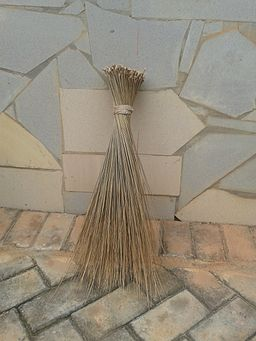 Ghanaian Broom