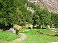 Giardino Botanico Alpino Paradisia abc23.JPG