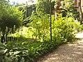 Giardino botanico di Brera (Milan) 339.jpg