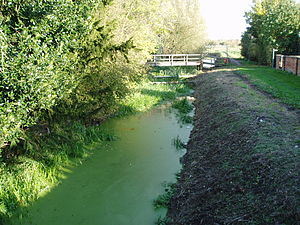 Horncastle Canal - The remains of Gibsons Cut near its junction with the Dogdyke branch at Tattershall