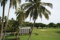 Golf Club, The Pearl, Pacific Harbour, Fiji - panoramio.jpg