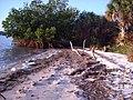 Googe Island - panoramio.jpg