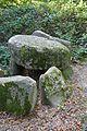 Grabhügel in den Hademarscher Bergen NIK 4233.JPG
