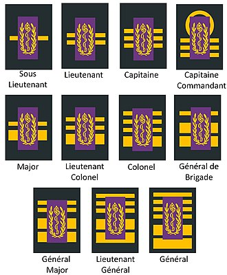 Belgian military ranks - Image: Grades de dentistes