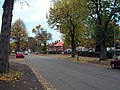 Gregory Ave in autumn - geograph.org.uk - 270407.jpg