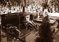 Grob rodziny dzieduszyckich.jpg