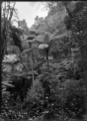 Grotto Gardens at Whangarei, 1923 ATLIB 300166.png