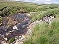 Gwys Fawr - geograph.org.uk - 505753.jpg