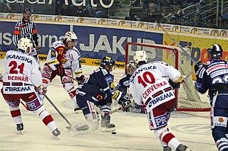 Jaroslav Bednář Czech ice hockey player