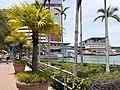 HK 中環碼頭 Central Piers 民光街 Man Kwong Street April 2020 SS2 08.jpg