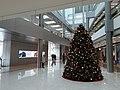 HK 中環 Central 國際金融中心 IFC Mall Xmas tree near Apple Store November 2020 SS2.jpg