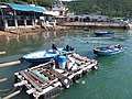 HK 西貢 Sai Kung 清水灣半島 Clear Water Bay Peninsula 布袋澳 Po Toi O Piers n boats August 2018 SSG 04.jpg