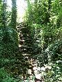 Habitat of Trent Park 05.JPG