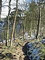 Hadrian's Wall Path above Crag Lough - geograph.org.uk - 750589.jpg