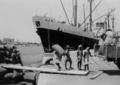 Hafenarbeiter bei der Verladung von Sackgut - MS Rothenstein NDL, Port Sudan 1960.png