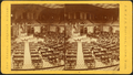 Hall of the House of Representatives, by J.W. & J.S. Moulton.png