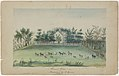 Hardinge, Pleasant Grove 1853, Watercolor.jpg